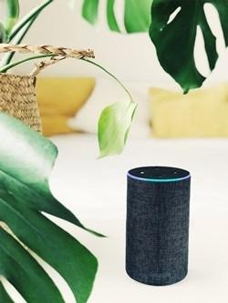TV'nizi nasıl kontrol edersiniz Amazon Yankı ve Alexa 2