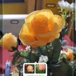 Samsung İnceleme Galaxy S9 ve Galaxy S9 + 13