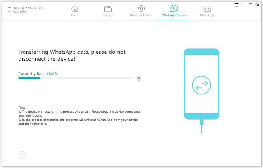 WhatsApp Transfer özelliği