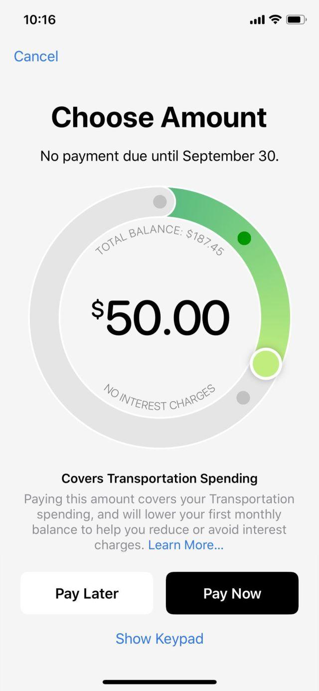 Uygulamanın İngilizce olarak ödeme başına ne kadar tutacağını açıklar. Bu durumda, toplam tutarın 50 ABD doları ödenmesi yalnızca harcamalarımın Taşıma bölümünü karşılayacaktır.