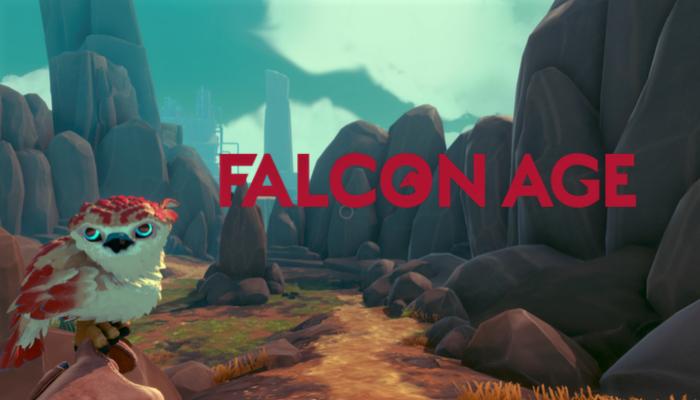 Falcon Yaş İnceleme - Bir Kuş Severler Rüyası 1