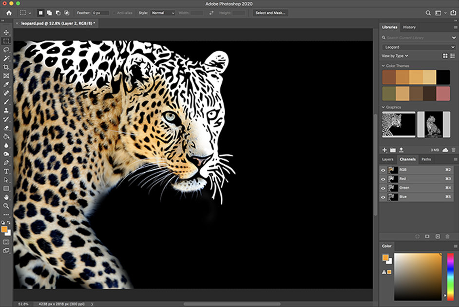 Adobe adds a slew of new features to Creative Cloud