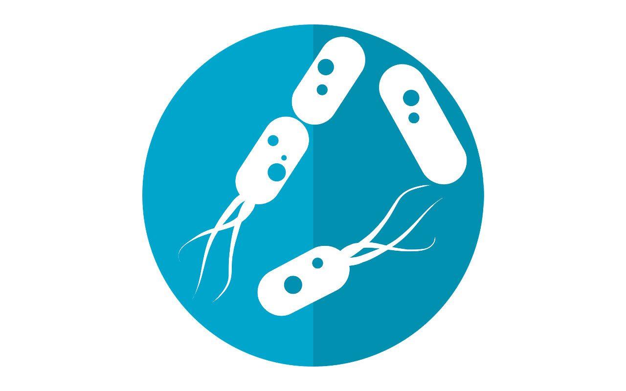 Pesquisa sobre bactérias intestinais abre caminho para o tratamento da depressão probiótica