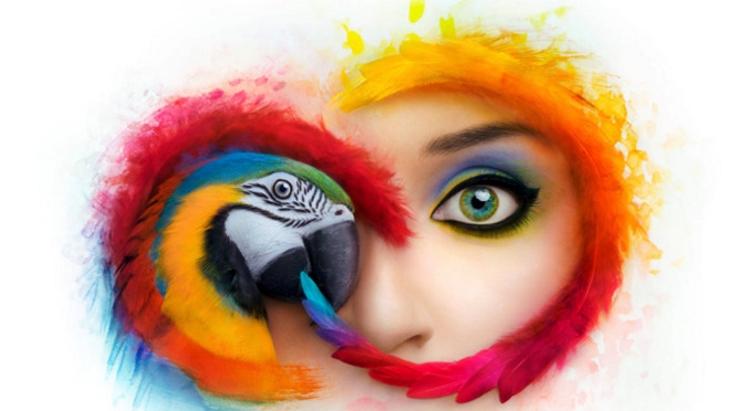 Assinantes da Adobe Creative Cloud solicitados a atualizar ou enfrentar