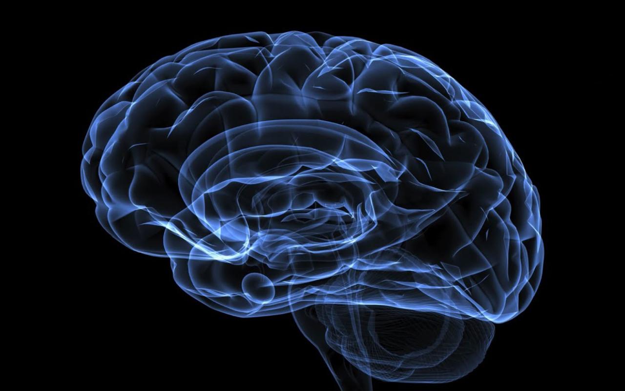 Células eletrônicas inovadoras podem aprender como um cérebro humano